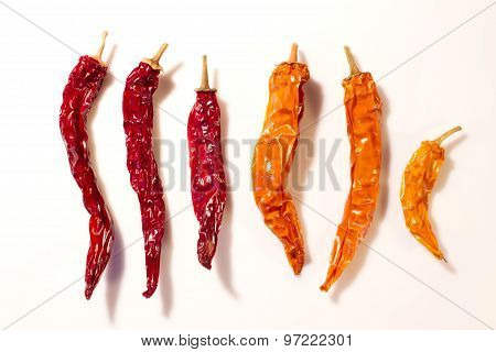 Dried Peppers Isolated