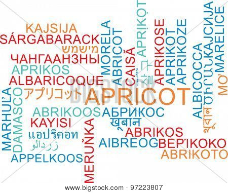 Background concept wordcloud multilanguage international many language illustration of apricot