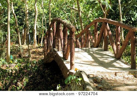 The bridge over a small river in a tropical garden.