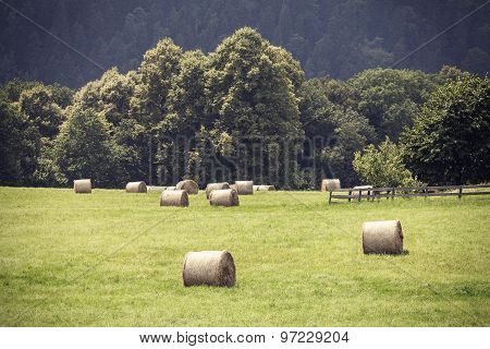 Retro Toned Summer Field With Hay Bales.