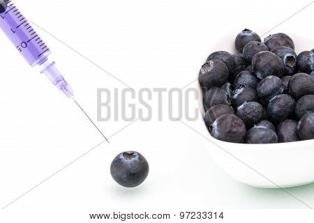 Genetic Modification, Blueberry, Fruit, Modification