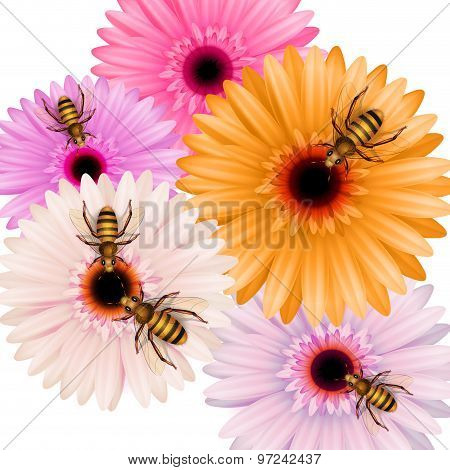 Working Bees On Flowers