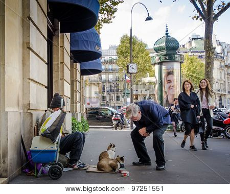 Senior male stops to chat with two cats on Paris street