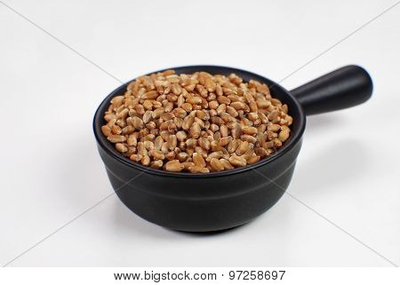 Wheat in grain