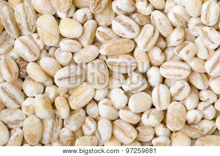 Pearl Barley As A Background Or Texture