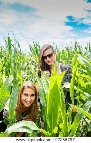 Two young girls hiding in a green cornfield
