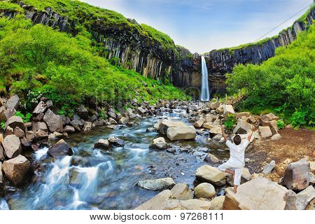 Black basalt columns frame the water jet. Picturesque waterfall Svartifoss in Skaftafell National Park of Iceland