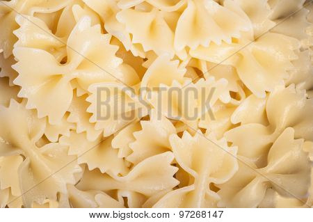 Cooked bow tie pasta noodles closeup macro