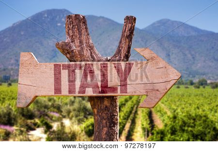 Italy wooden sign with winery background