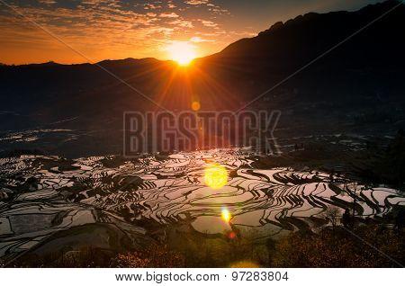 Terraced rice field in water season in sunrise in YuanYang, Yunnan, China
