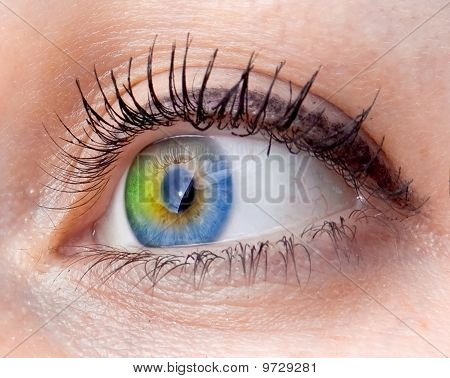 Abstract Human Eye