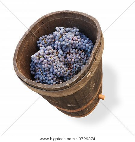 Banheira com uvas - Clipping Path
