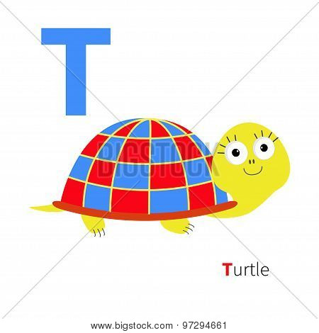 Letter T Turtle Zoo Alphabet. English Abc With Animals Education Cards For Kids Isolated White Backg