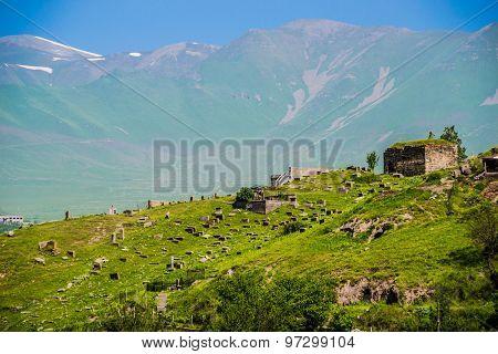 Necropolis on grassy slope, background mountains