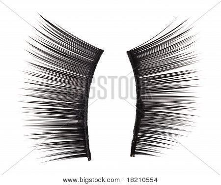 False Eyelashes  Over White, Macro View