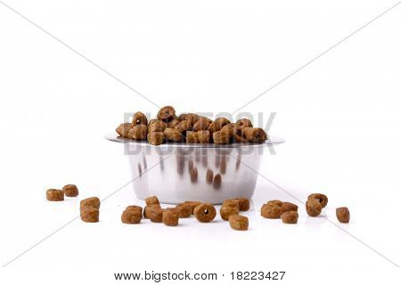 dog food isolated