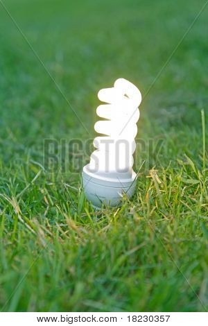 energy saving bulb on grass.