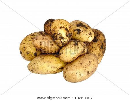 Unwashed Potato On A White