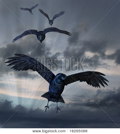 Crows Flying