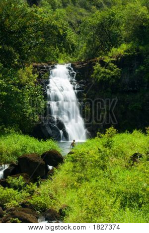 Waimea Waterfall