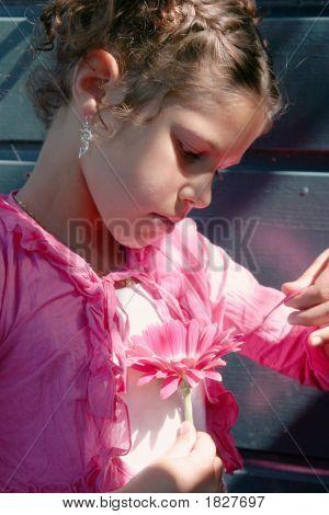 Brunette In Pink With Gerbera