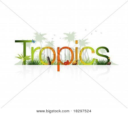Tropics - Holiday