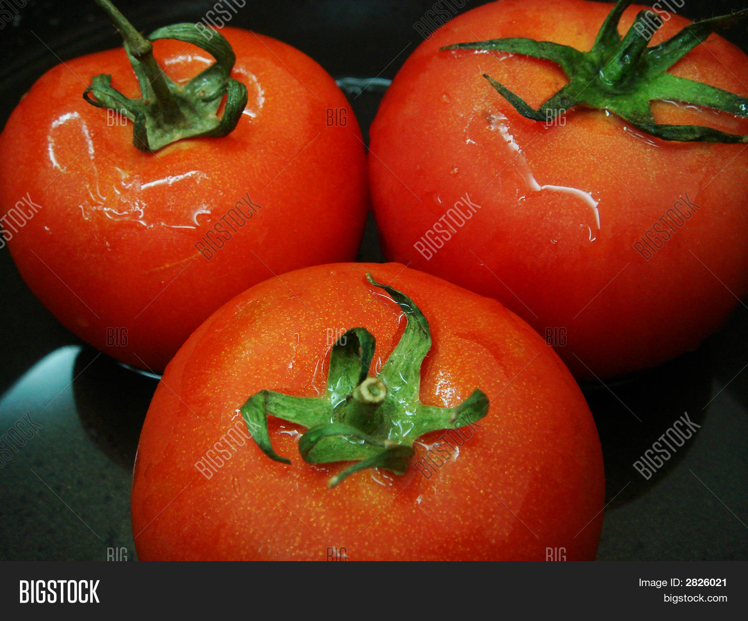 juicy red tomato company essay