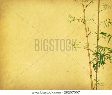 chinese bamboo trees with texture of handmade paper
