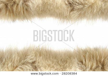 Fluffy Wool Texture