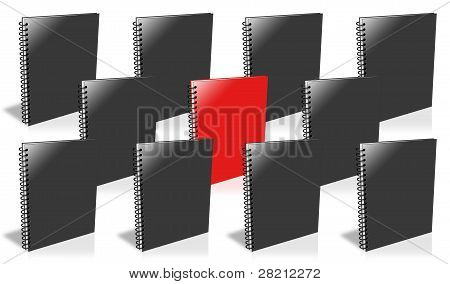 Many Ring Binder, Only One Red.
