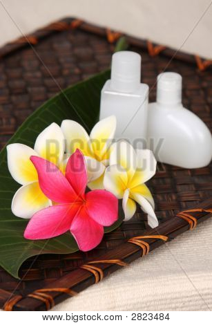 Tropical Day Spa Beauty Products