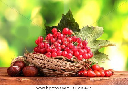 viburnum in basket, chestnuts and briar on wooden table on green background