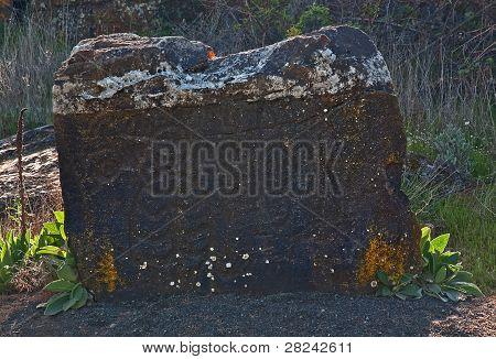 Old Native American Petroglyphs Pictogram