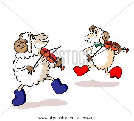 Lambs are musicians