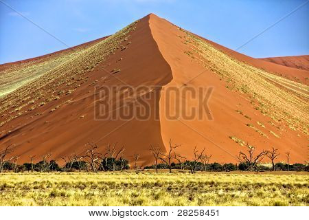 Vast Orange Dune At Sossusvlei Namib Naukluft Park Namibia Africa