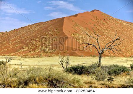 Vast Dune At Sossusvlei Namib Naukluft Park Namibia