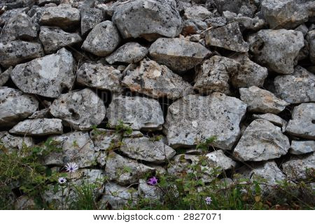 A Dry Stone Wall