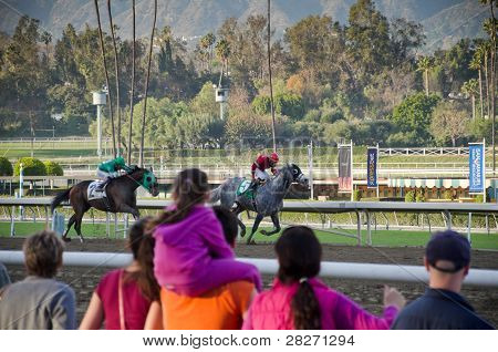 Horse Racing at Santa Anita Park