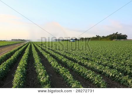 Irrigation of farmland