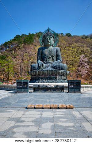 The Great Unification Buddha Tongil Daebul is a 14.6-meter 108 ton Bronze Buddha statue in Seoraksan poster