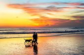 Silhouettes Of Couple With Dogs Walking At Tropical Beach In Scenic Sunset, Bali, Indonesia poster