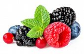 Berries Mix Isolated On White Background. Raspberry, Red Currant,  Blueberry And Black Berry With Le poster