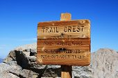 ������, ������: ���� Crest Trail