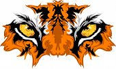 picture of tiger eye  - Graphic Team Mascot Image of Tiger Eyes - JPG