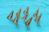Synchronized Swimmers point up out of the water in action