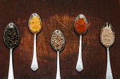 Colourful Various Herbs And Spices For Cooking On Dark Background.the Herbs And Spices On A Wooden B poster