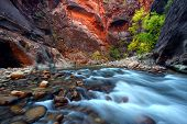 pic of southwest  - Virgin River cascades in the The Narrows of Zion Canyon  - JPG