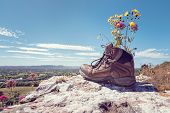 Hiker hiking boots resting with wildflowers on a mountain trail with distant views of countryside in poster