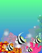 stock photo of sea life  - Marine background with beings of tropic sea - JPG