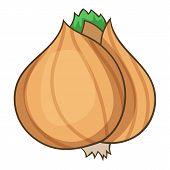 Whole Bulb Brown Onion Icon. Cartoon Illustration Of Whole Bulb Brown Onion Icon For Web Design poster